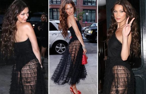 Bella Hadid flashes her bum in stunning see-through dress for Dior's new make-up launch