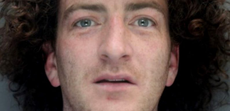 Drunk yob who urinated on sleeping homeless man in street 'for a joke' is jailed
