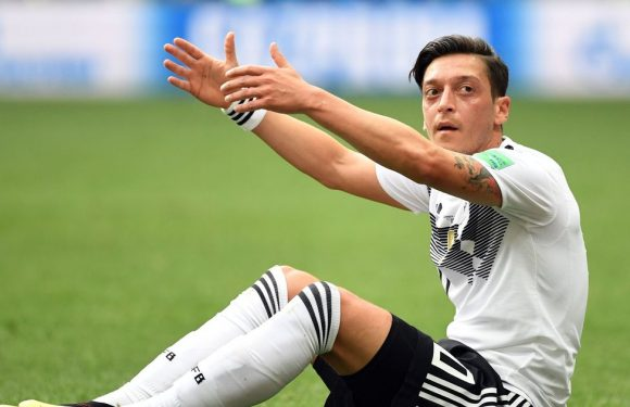 Germany respond to claims Ozil has body language of a dead frog