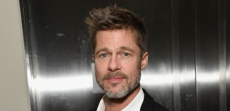 Brad Pitt Spotted Riding His Bike After Custody Case Details Leak