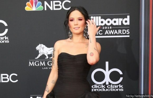 Halsey Helps Two Fans Get Engaged at Sao Paolo Show
