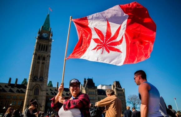 Canada legalises cannabis for recreational use as thousands of Brits urge Theresa May to change laws on medical use of the drug