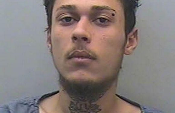 Bungling cops hunting knifepoint mugger gave the culprit a LIFT to a cash point to use stolen bankcards