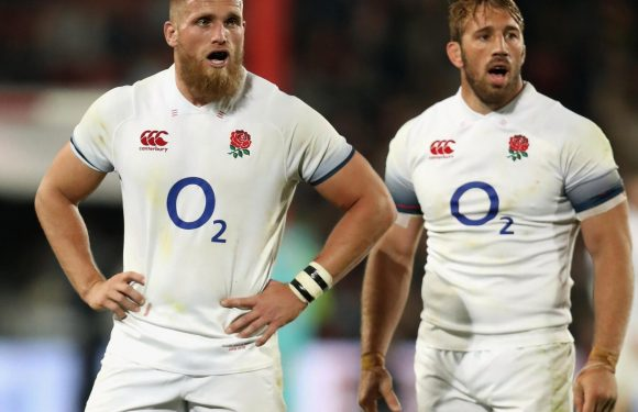 Brad Shields says he's an English as his grandparents CHIP BUTTIES – as Kiwi-born star takes Chris Robshaw's place to face South Africa