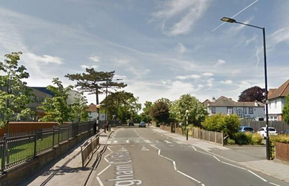 Woman knifed in South London as capital's wave of violence continues