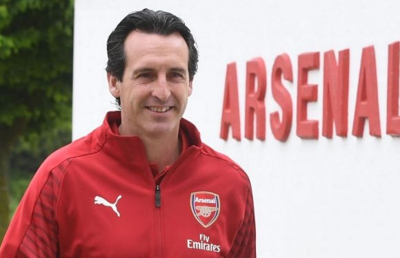 Arsenal legend desperate for return to Emirates