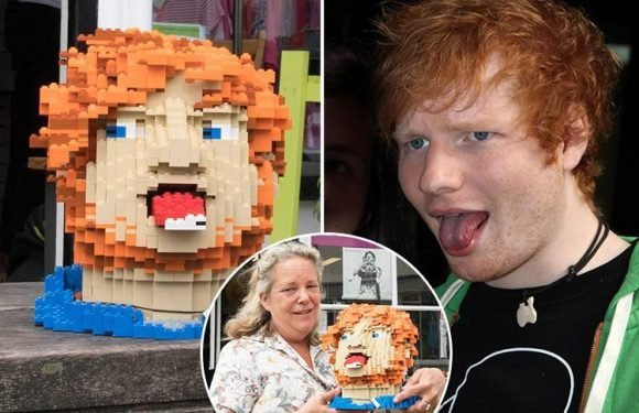Ed Sheeran donates life-size Lego self-portrait built while on tour to his local charity shop