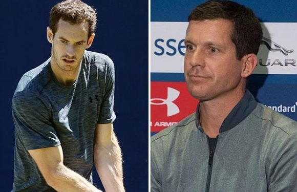 Andy Murray won't even think of dodgy hip once buzz of competing again takes over, insists Tim Henman