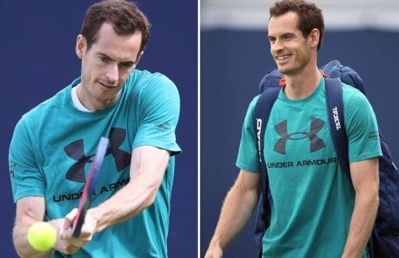Wimbledon 2018: Andy Murray on track to feature at SW19 after he declares himself fit to play in the Fever-Tree Championships at Queen's
