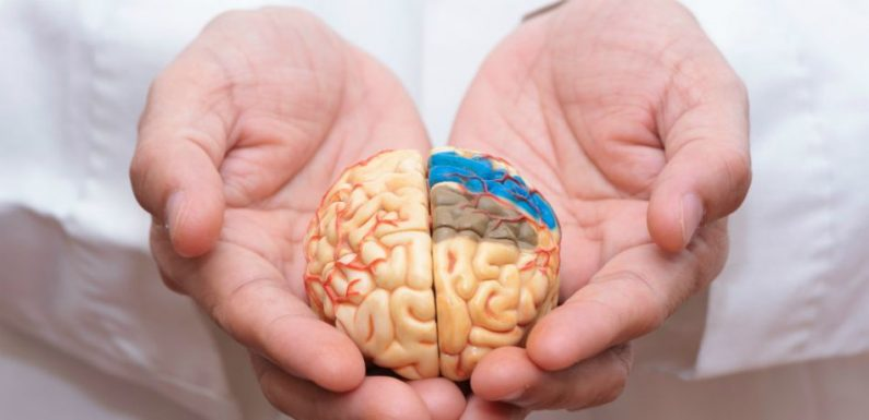 Scientists Identify 'New Type Of Depression,' Discovery Will Aid Development Of Prescription Medications