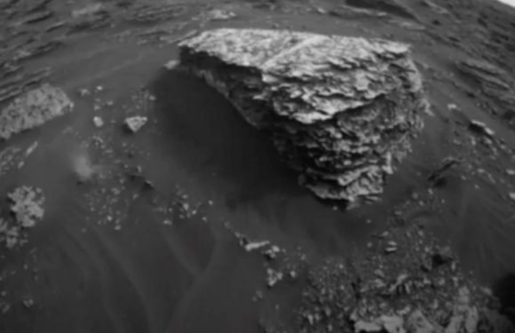 NASA images 'expose life on Mars' as 'strange figure is spotted moving'