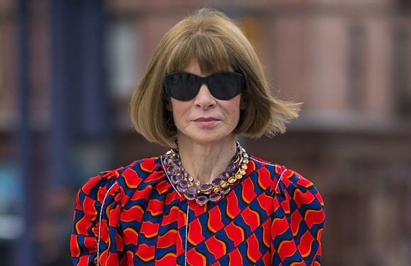 Anna Wintour was too cold at Alexander Wang's fashion show