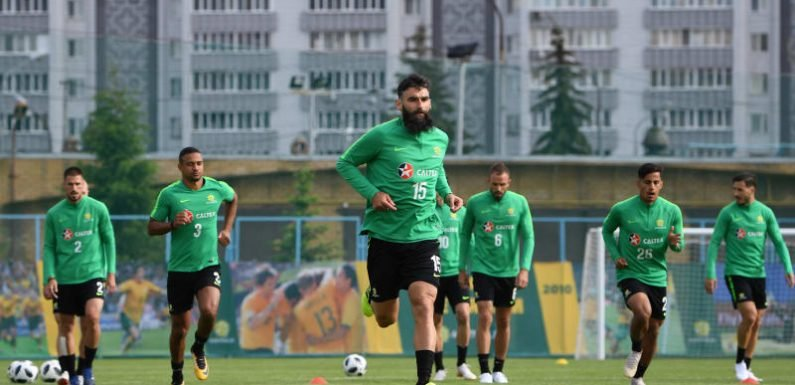 Socceroos captain Jedinak battling for a starting spot against France