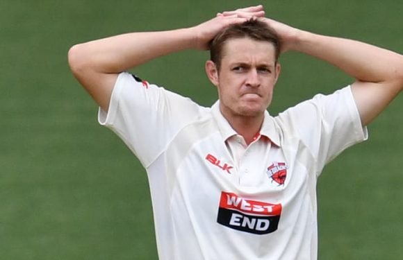 Australian bowler Mennie lay motionless after being hit in the head