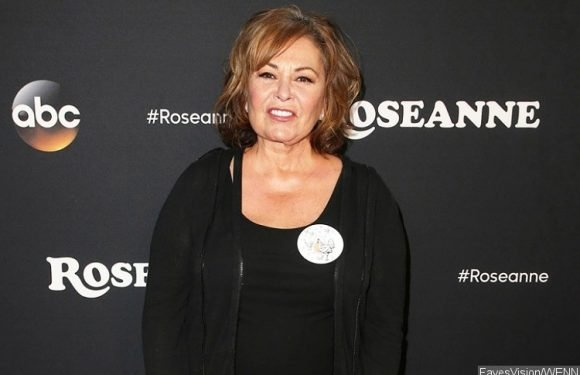 Roseanne Barr Begged ABC Execs to Save Show for the Sake of Cast and Crew
