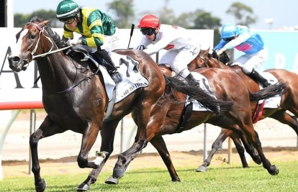 Dunn plans to play the waiting game with Care To Think in Stradbroke