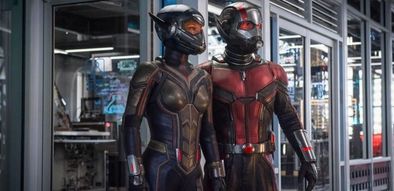 Ant-Man and The Wasp's Paul Rudd and Evangeline Lilly address their Infinity War absence
