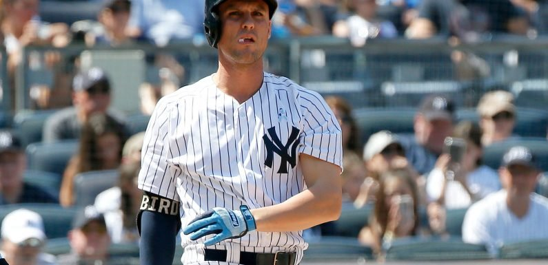 Why Yankees think Greg Bird is about to explode