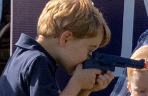 Prince George sparks backlash after playing with toy gun during polo game