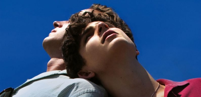 Call Me By Your Name 2 release date, plot, cast and everything you need to know