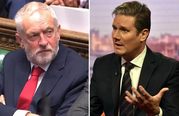 Labour's Brexit chief Keir Starmer admits party's MPs are split over whether to join the EEA