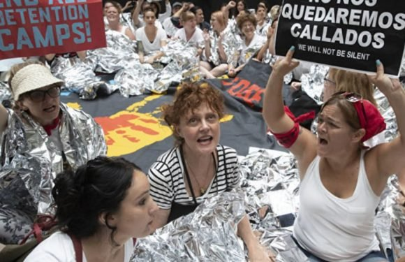 Susan Sarandon Was Arrested at a Protest
