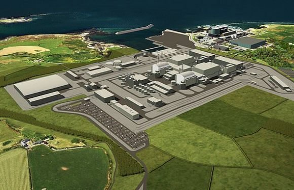 Direct investment for new nuclear power station to be considered by…