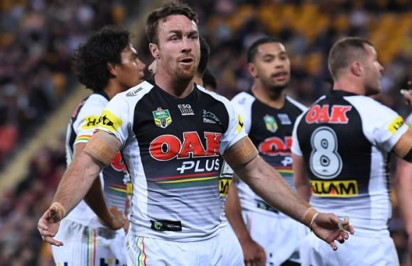 Maloney tips Panthers to bounce back after being bucked off by Broncos