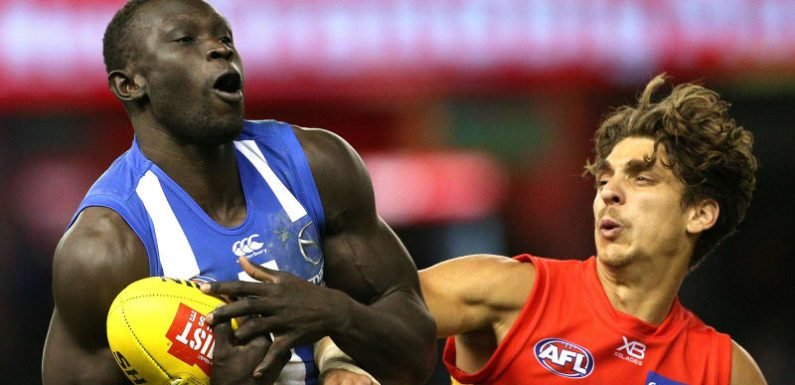 Defenders star as North Melbourne down Suns