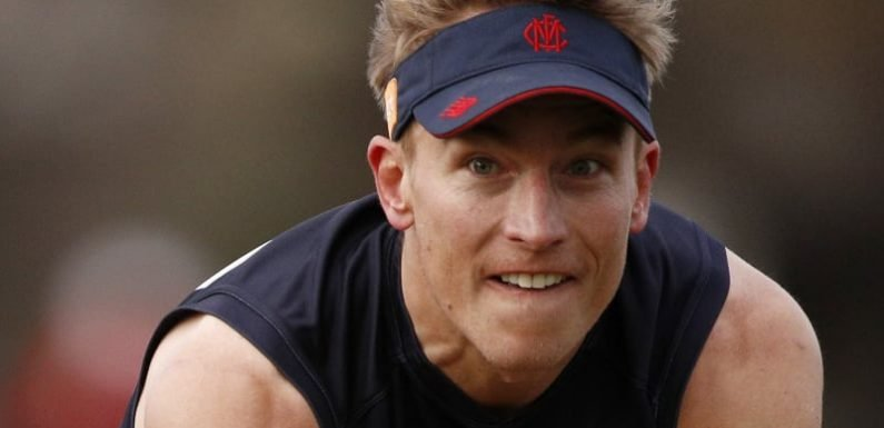 Demons veteran Vince in the mix for Dogs clash