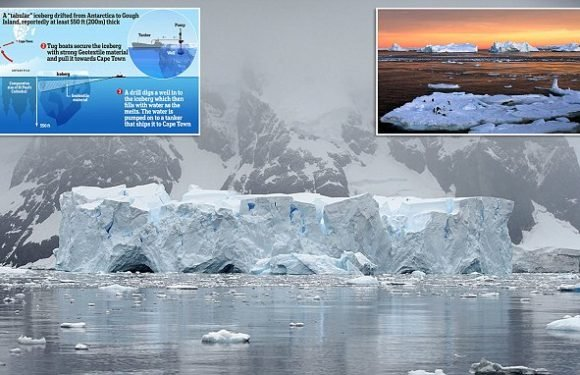 Massive icebergs could be towed 1,200 miles to Cape Town