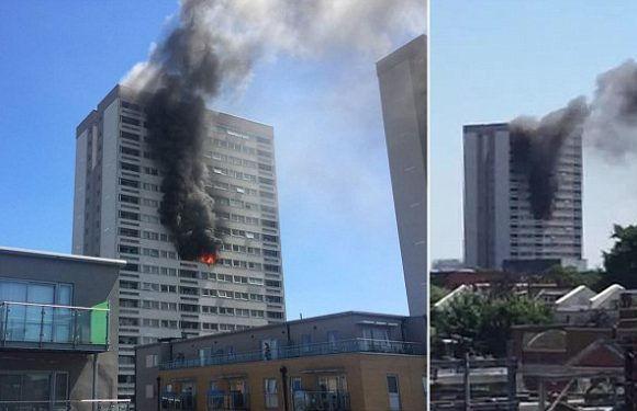 Firefighters battle blaze in a tower block in East London