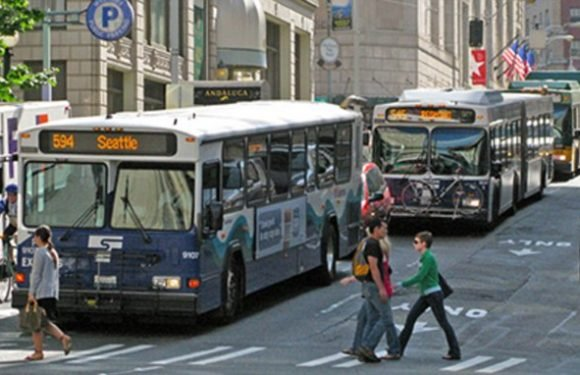Mathematician reveals 'bus bunching' theory ruining your travel plans