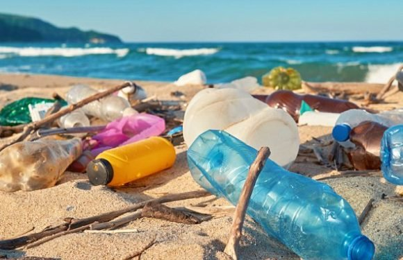 Environmentally friendly plastic made from straw could soon be used