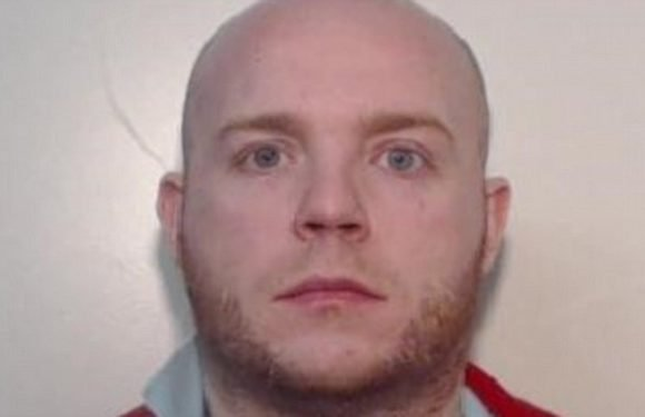 Gay businessman, 31, is jailed for 12 years over car attack