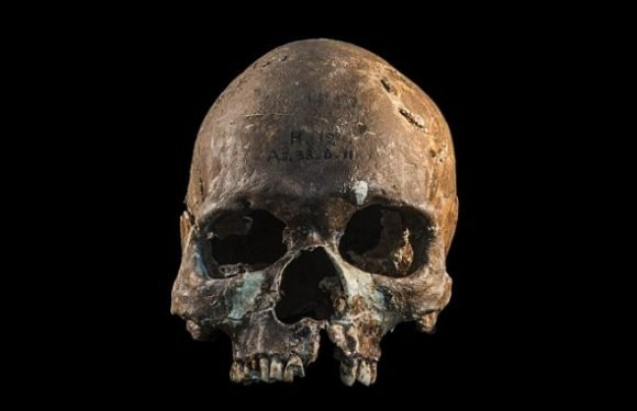 Ancient DNA reveals new clues on genetic history of Southeast Asia