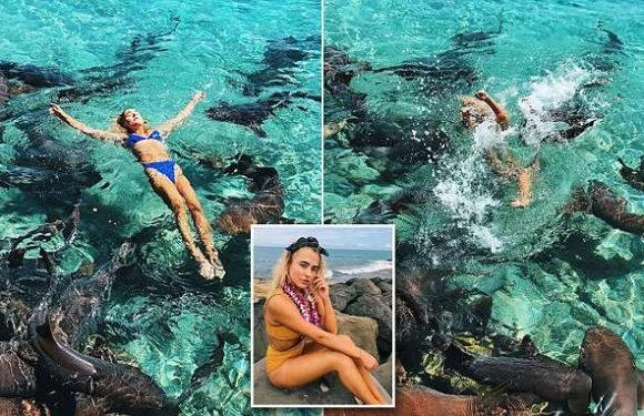 Instagram model, 19, is attacked while swimming with sharks in Bahamas