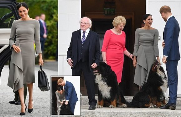 Harry and Meghan meet Irish leader Michael Higgins and his wife