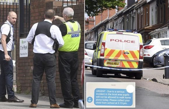 Grandmother, 86, is stabbed to death in Birmingham