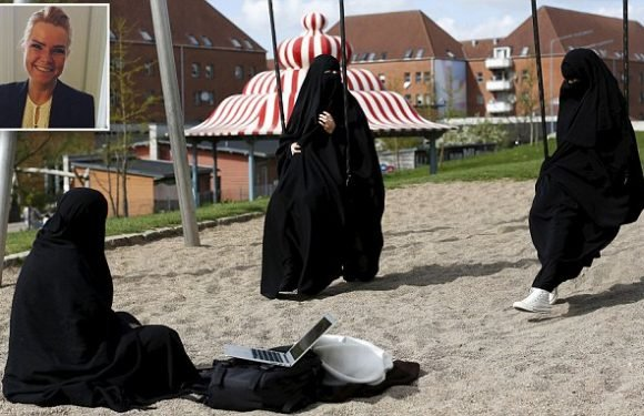 Why is one of Europe's proudly liberal nations banning the burka?