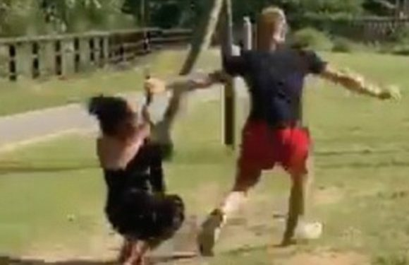 Woman falls flat on her face while ziplining