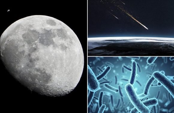 Did life once thrive on the moon four billion years ago?