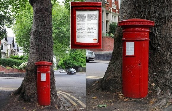 Postbox swallowed by tree decommissioned after 120 years