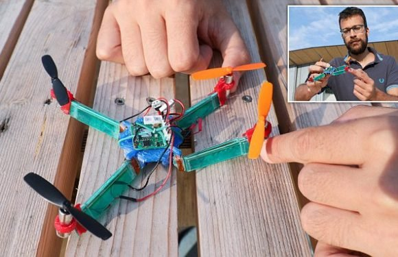 Insect-inspired drone has wings that collapse 'like origami'