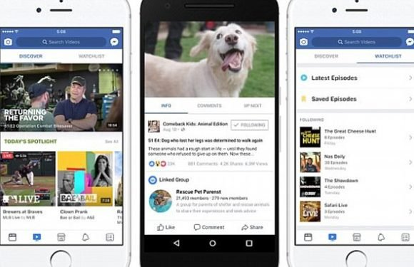 Facebook to launch its own X Factor-style singing competition