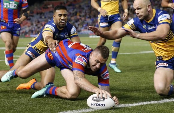 Pearce instrumental as Knights survive late scare against Eels