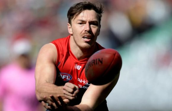 Demons blow: Hibberd out of Geelong clash with quad injury