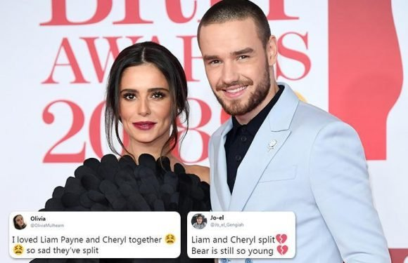 Cheryl and Liam Payne fans devastated over shock split – but some claim they saw it coming