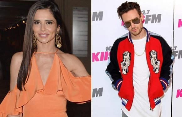Cheryl slams 'ridiculous' reports she's dating a 'mystery man' weeks after split with Liam Payne