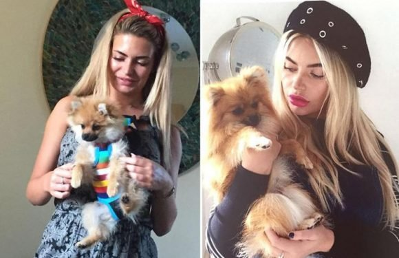 Megan Barton Hanson's dog Pumpkin has died of stomach cancer one week after she entered Love Island villa – and she doesn't know